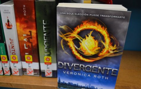 Top Ten Book Choices