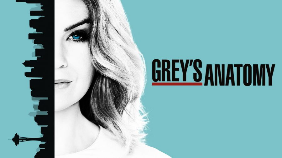 Grey%27s+Anatomy