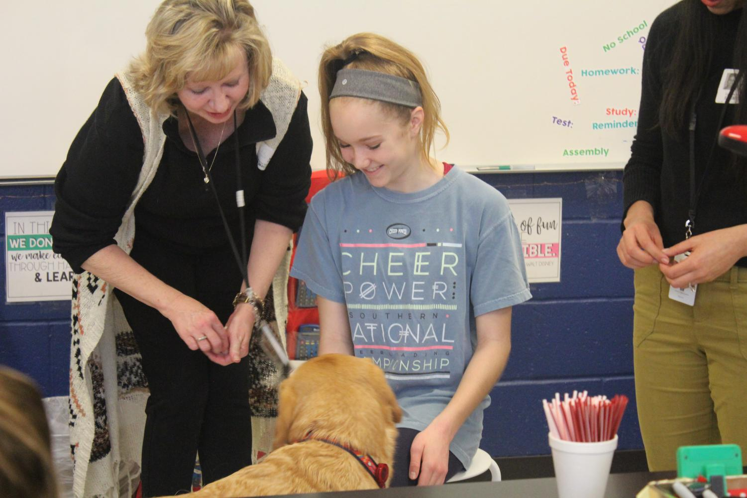 Learning Tricks at Dogs Helping Kids