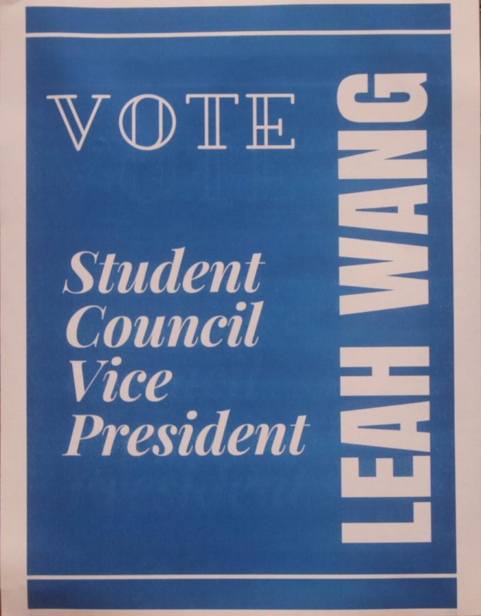 Student Council Posters