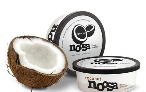 Noosa Yogurt Review