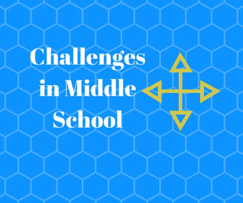 Challenges in Middle School