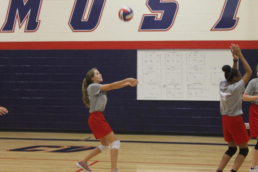 Volleyball Sets for 2018 Debut