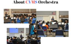 Some Facts About CVMS Orchestra