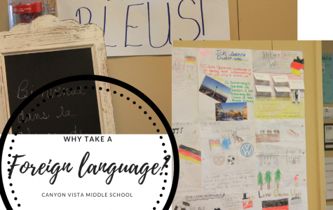 Why or Why Not Take a Foreign Language?