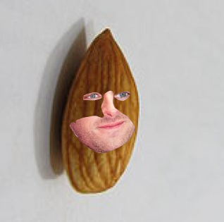 10.+Almond+Hammer-+Why+it%27s+Armie+Hammer%2C+star+of+call+me+by+your+name%21+But+what%27s+this%3F+He%27s+an+almond%3F+This+almond+is+a+quality+one%2C+if+I+do+say+so+myself%2C+but+seeing+as+how+this+almond+is+partially+human%2C+it+might+taste+a+little+strange.+But+if+I+had+to+pick+one+almond+that+I+would+hang+on+my+wall+to+show+my+friends%2C+it+would+be+Almond+Hammer.