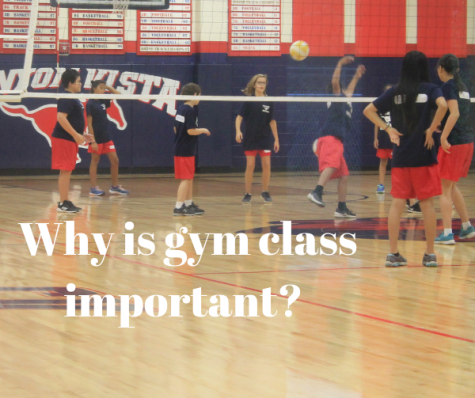 Why Is Gym Class Important?
