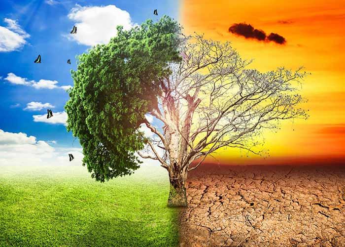 Global Warming Opinion