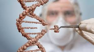Gene editing scientist
