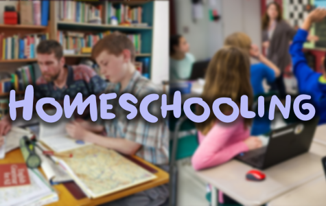 Homeschooling: Good or Bad?