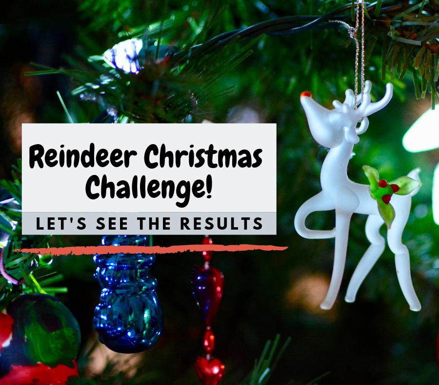 Do the CVMS students know their reindeer?
