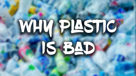 Why Plastic is Bad
