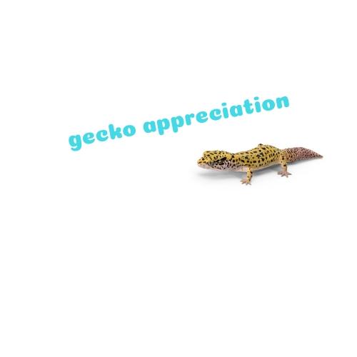 Gecko Appreciation