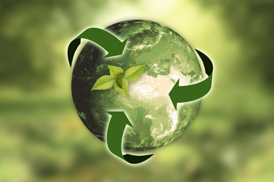 Five Ways We Can Help our Planet