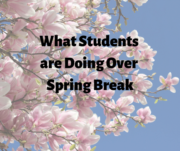What CVMS Students are Doing for Spring Break