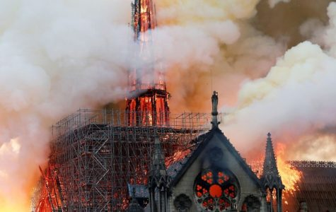 Should the Notre Dame be Rebuilt?