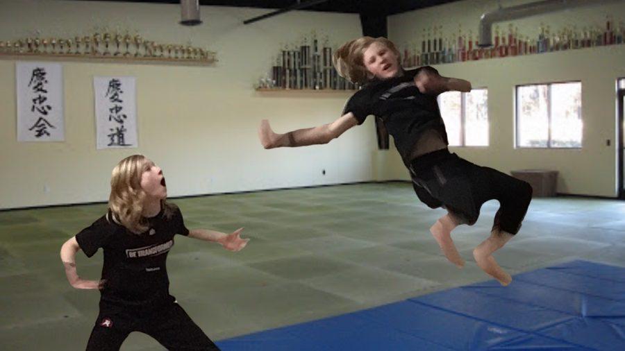 TaeKwonDo: A Martial Art That's Pretty Cool