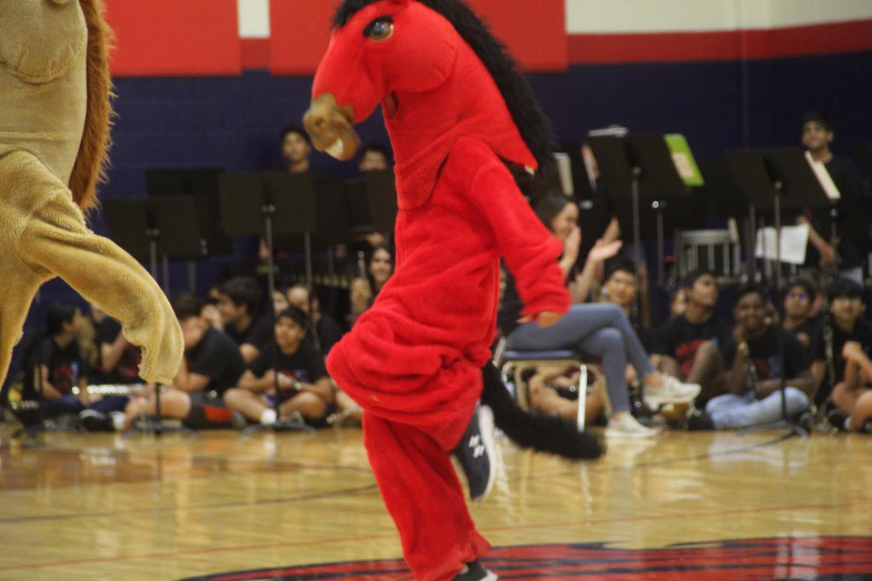 Mustang+dancing