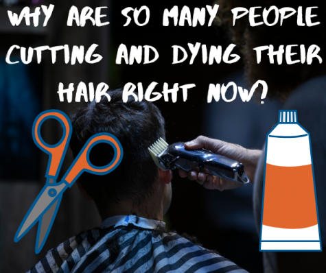 Why Are So Many People Altering their Hair Right now?
