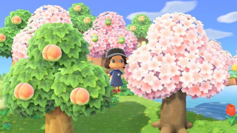 Animal Crossing: New Horizons may be the single most hyped game this year, as well as quarantine