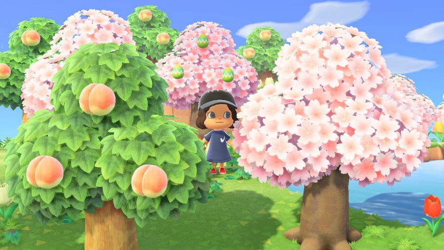 Animal Crossing: New Horizons may be the single most hyped game this year, as well as quarantine's most popular game. The personal and real feel of every action you take is a great distraction from everything else happening around you. You get to be in your own little world and make it just how you want it to be. The creative opportunities are countless, leaving your imagination as the only limit.