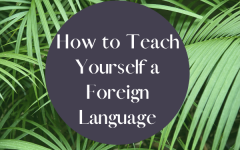 Tips for Teaching Yourself a Foreign Language