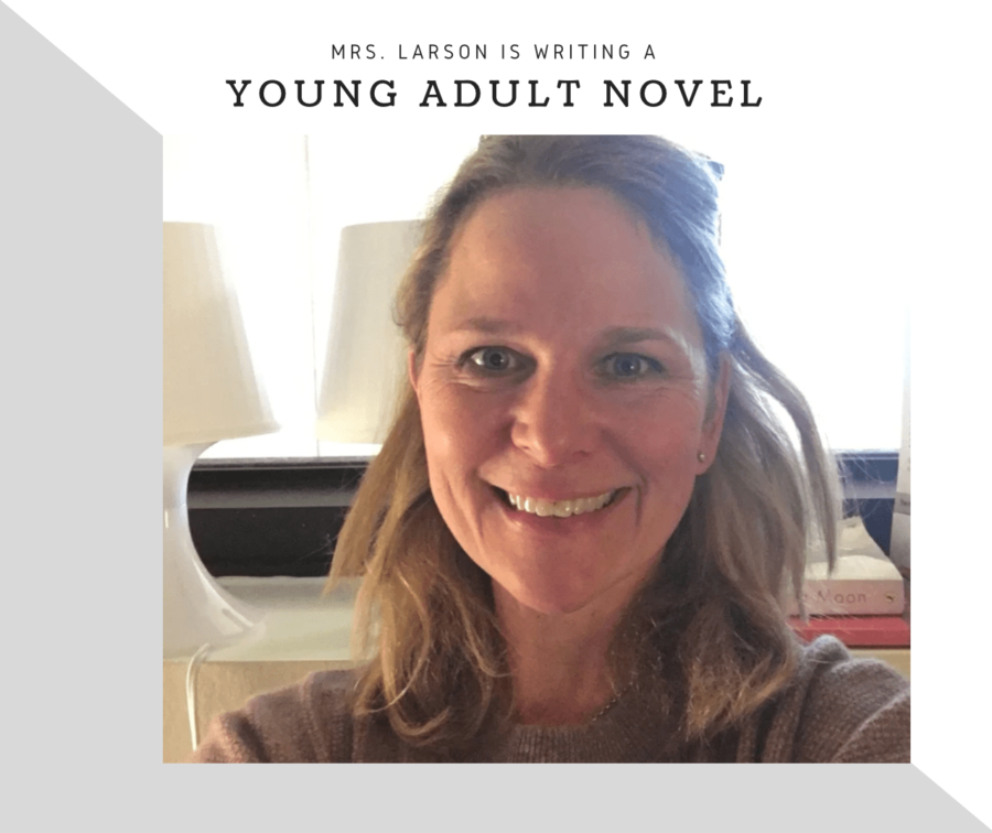 Interview - Mrs. Larson is Writing a YA Book