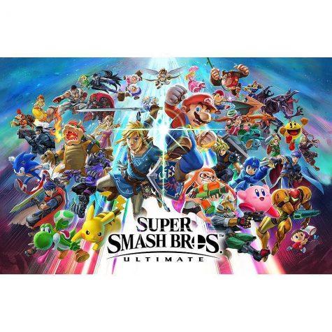 Super Smash Bros New Brawler